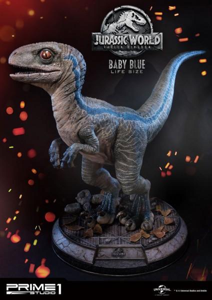 Jurassic World: Fallen Kingdom - Baby Blue Life-Size Statue: Prime 1 Studio