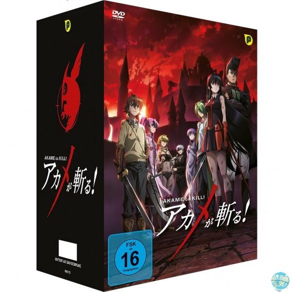 Akame ga KILL – Box 1 Ep. 1-6 DVD: Peppermint