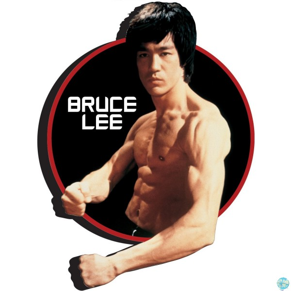 Bruce Lee Magnet Aquarius